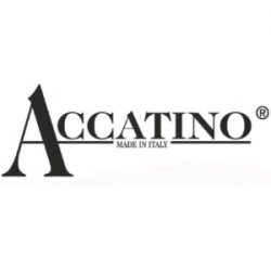 300x300_accatino
